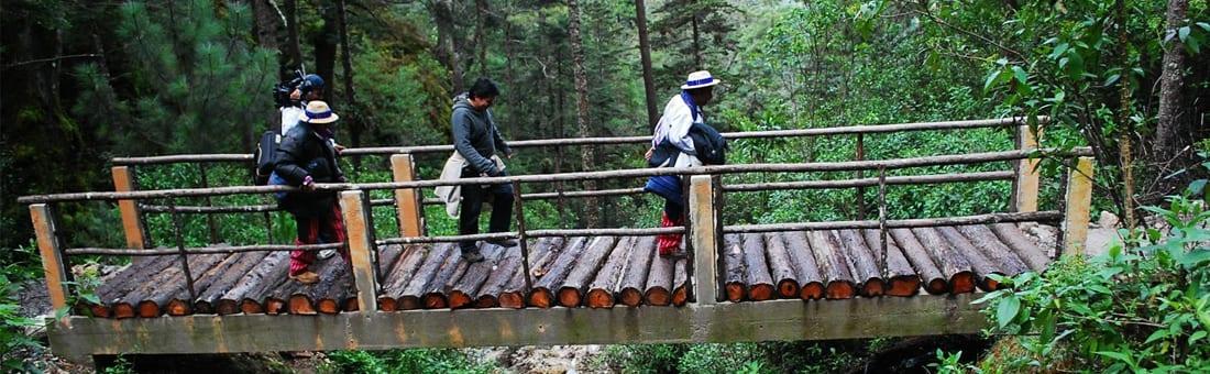 maestria-profesional-en-gestion-del-turismo-sostenible